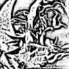 B>+20 Legend Wan to buy +20 legend heirloom lightning oak staff or zauharant staff - last post by DarkYoru
