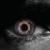 Hysteria [ 130+ WoE | Activ... - last post by Fairlawz